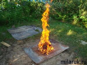 костер,на котором сжигают умершего паука
