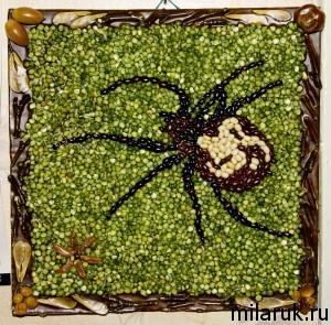 поделки из крупы,сделай сам,интерьер,рассказ о пауках,подарки своими руками