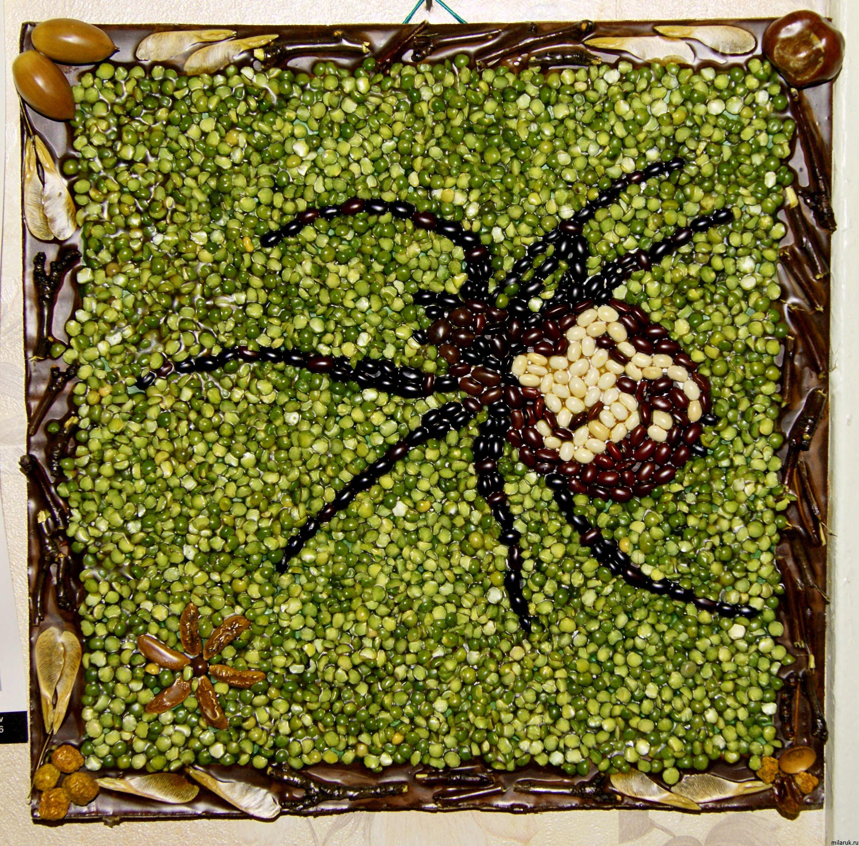 Картины из круп и семян своими руками фото 42